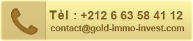 gold immo invest